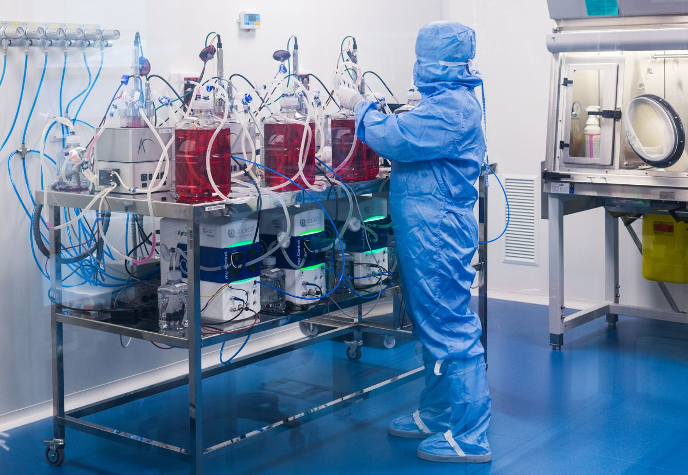 Tasks in the cleanroom